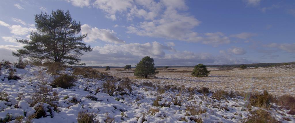 03 Landschap met sneeuw