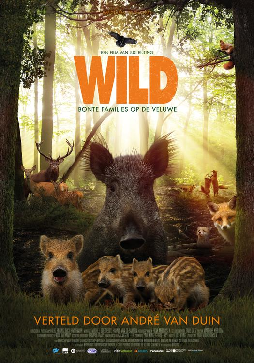 Wild ps 1 jpg sd low